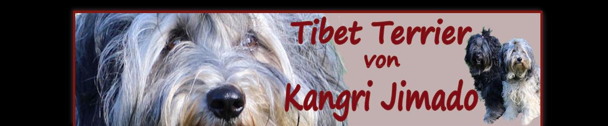 Gästebuch Banner - verlinkt mit https://www.tibet-terrier-kangri-jimado.de